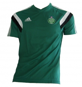 AS St.-Etienne Trikot Training Spieleredition Adidas 2013/14