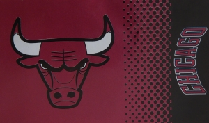 Chicago-Bulls NBA Fahne