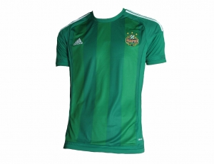 SK Rapid Wien Trikot Home 2015/17 Adidas Player Issue